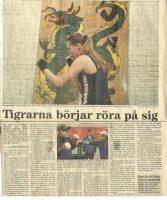 BKTiger Artikel-BK_TIGER_INFOR_SM_VLT