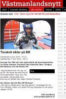BKTiger Artikel-sahand_em_20100616